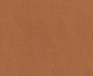 Искусственная кожа Oregon 006