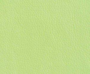 Искусственная кожа Oregon 019