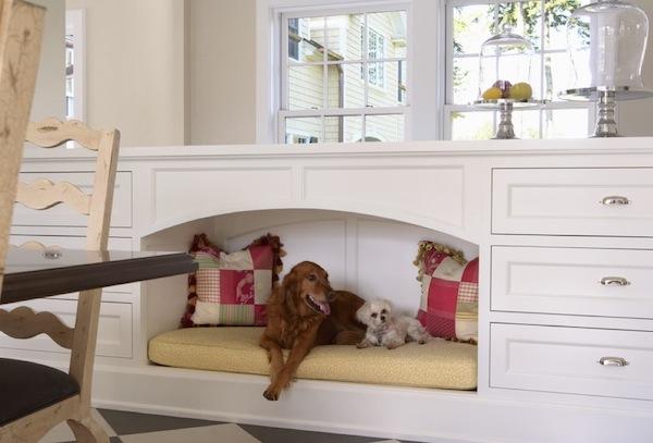 Собачий диван