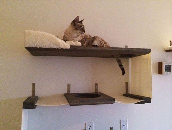 Полки для кошки