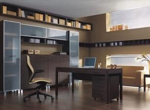 офисный шкаф проект 008 превью